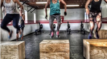 Roark Gyms