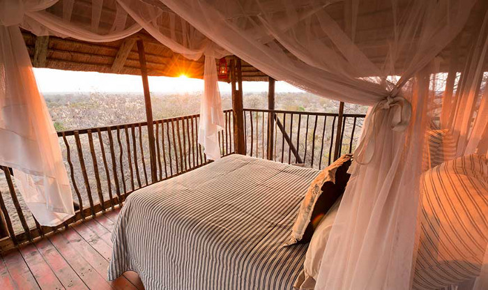 10. The Treehouse Africa on Foot - Kruger National Park