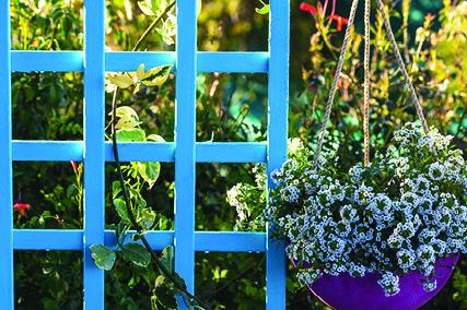 Garden Trellice 3