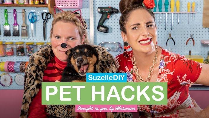 Suzelle DIY pet hacks